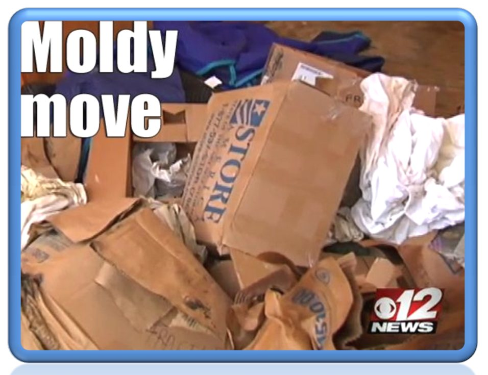 IAQ Solutions Moldy Move 12 News
