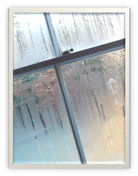 Window Condensation Florida Indoor Air Quality Solutions IAQS