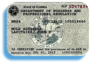 Florida Mold License