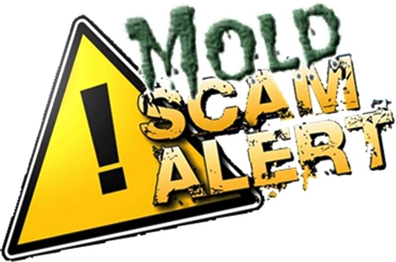 Mold Scam Alert