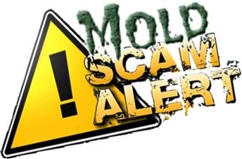 Mold Scam Alert! Homeowner Beware!